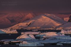Antarktyda (nowe)
