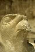 egipt-2004-15