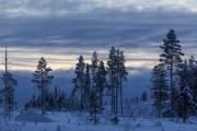 _m4_8657-finlandia-kuusamo
