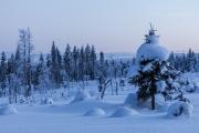 _m4_8659-finlandia-kuusamo