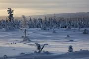 _m4_8809-finlandia-kuusamo