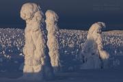 _m4_9007-finlandia-kuusamo