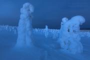 _m4_9278-finlandia-kuusamo