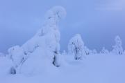 _m4_9397-finlandia-kuusamo