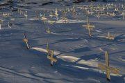 _m4_1458-grenlandia-ilulissat-zima