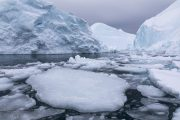 _m4_9804-grenlandia-ilulissat-zima