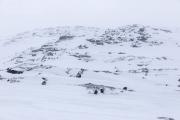 _M4_0774-psy-husky-zaprzeg-Grenlandia