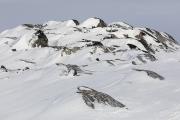 _M4_1100-psy-husky-krajobraz-Grenlandia