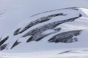 _M4_1166-psy-husky-krajobraz-Grenlandia