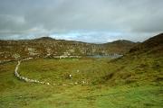 irlandia-rel-2006-13