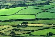 irlandia-rel-2006-17