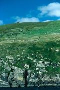 irlandia-rel-2006-37