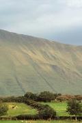 irlandia-rel-2006-75