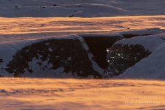 Islandia-jaskinia-lodowa-zima-_M4_5508