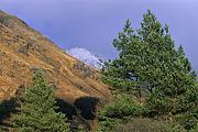 Szkocja-2011-02