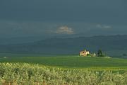 toskania-2007-14