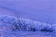zima-2010-04